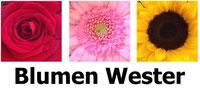 Blumen Wester, Heiligenhaus